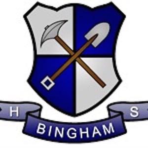 Bingham school logo