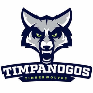 Timpanogos school logo