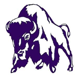 Tooele school logo